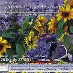 Lavender Wind Festival - 2014