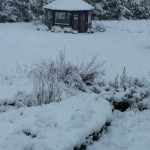 Gazebo in the snow