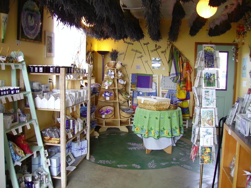 Inside the Shop