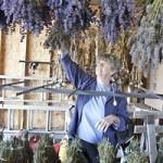 Sarah hanging lavender