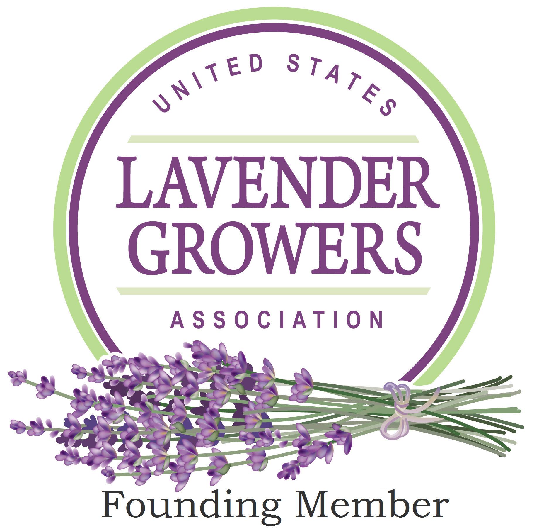 USLGA Logo Founding Member