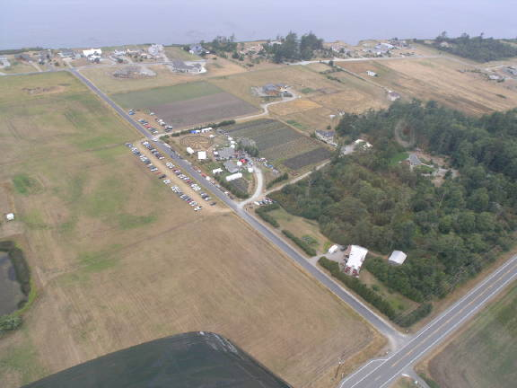 Festival from the air