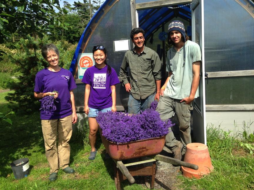 Harvest Crew Day One
