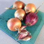 mise-en-place-onion-garlic